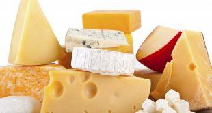 طعم دهنده پنیر چدار